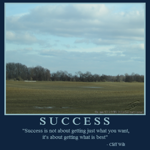 success-is-not-getting-what-you-want-it-is-what-is-best